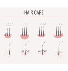 Hair care icon set vector