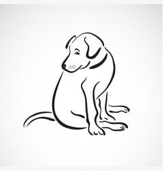 sitting doglabrador retriever on white vector image vector image