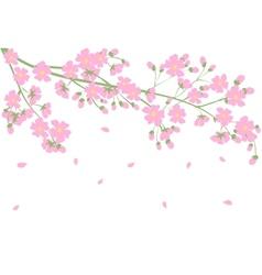 tree branch vector image vector image