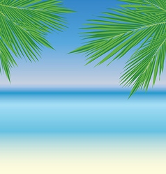 PalmLeaves11 vector image