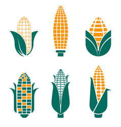 corn vegetables isolated icons farm food and field vector image