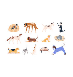 Set cute pets adorable cats dogs different vector