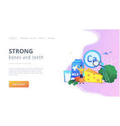 uses calcium concept landing page vector image