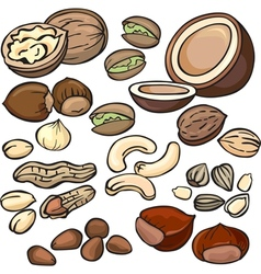 Nuts seeds icon set vector image vector image