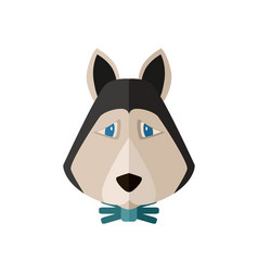 siberian husky head icon in flat design vector image vector image