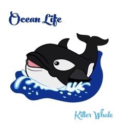 Killer whale in the ocean vector