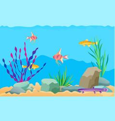 Aquarium fish swimming among stones and seaweed vector