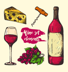 Colourful sketch of wine elements vector