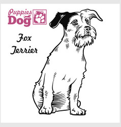 Fox terrier puppy sitting drawing hand sketch vector