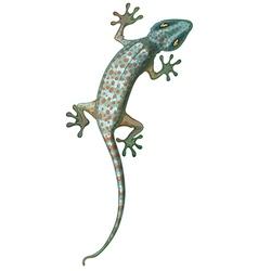 Tokay Gecko vector