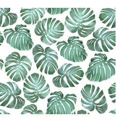 Tropical seamless pattern monstera vector