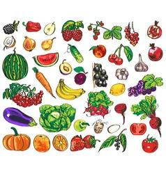Vegetables fruits berries vector