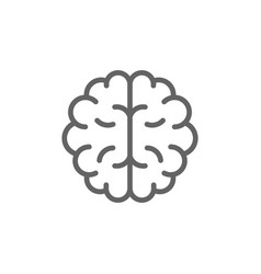 simple brain line icon symbol and sign vector image