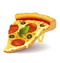 cheesy pizza slice vector image