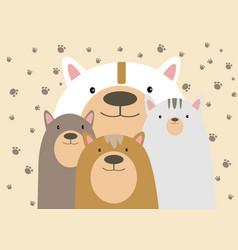 bear family vector image