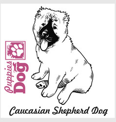 Caucasian shepherd dog puppy sitting drawing by vector