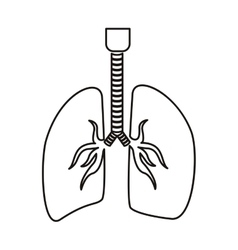 Contour respiratory system with lungs vector