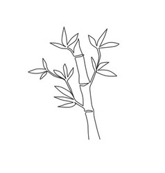 one single line drawing bamboo trees vector image