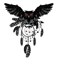 owl with dreamcatcher vector image