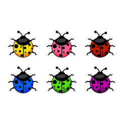 cartoon colorful ladybug set animals and insects vector image vector image