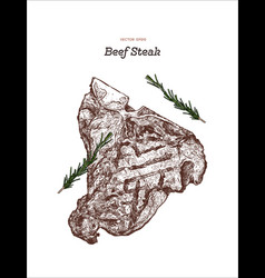 beef steak hand draw sketch vector image