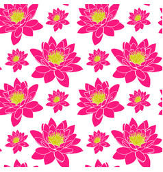 Blooming pink water lily with yellow stamens vector