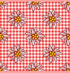edelweiss flower icon alpine logo pattern vector image