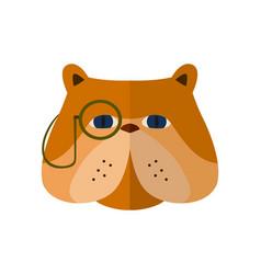 english bulldog head icon in flat design vector image