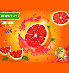 Fresh grapefruit juice ad refreshing citrus drink vector