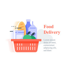 Full red basket groceries supermarket products vector