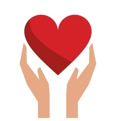 Hands holds heart love care vector