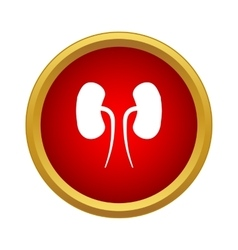 Human kidneys icon simple style vector image