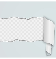 Light background with a torn strip of paper vector image