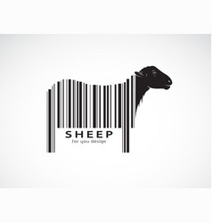 sheep on body is a barcode wild animals sheep vector image