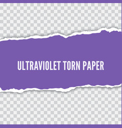 torn paper realistic vector image