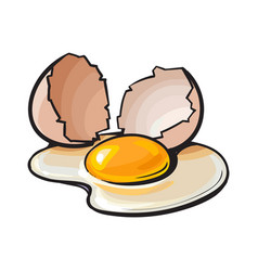 cracked broken and spilled chicken egg sketch vector image