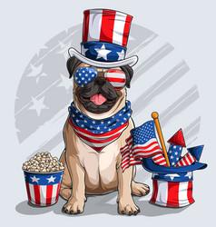 Cute beige pug dog 4th july elements vector