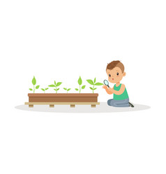 cute little boy examining plants through a vector image