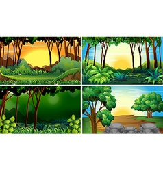 Forest scenes vector