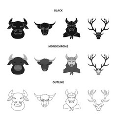 Isolated object antler and animal icon vector