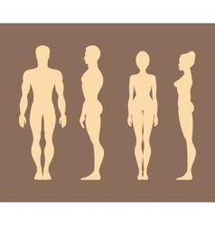 Silhouettes of men and women Anatomy vector