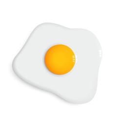 fried egg and dish vector image