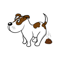 the dog defecates vector image