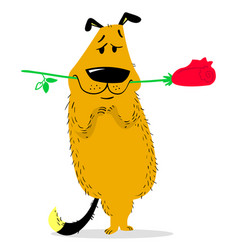 A dog with a rose in its mouth animal like human vector