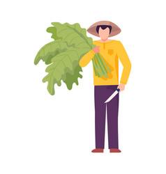 Asian male farmer holding green leaves as vector