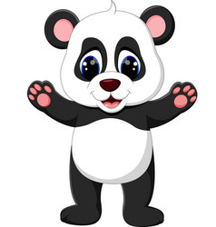 cute baby panda cartoon vector image