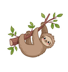 cute sloth creeps on a tree vector image