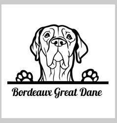 Dog head bordeaux great dane breed black and vector