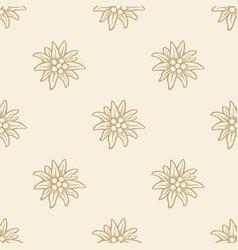 Edelweiss flower icon alpine logo pattern vector
