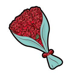 isolated roses design vector image